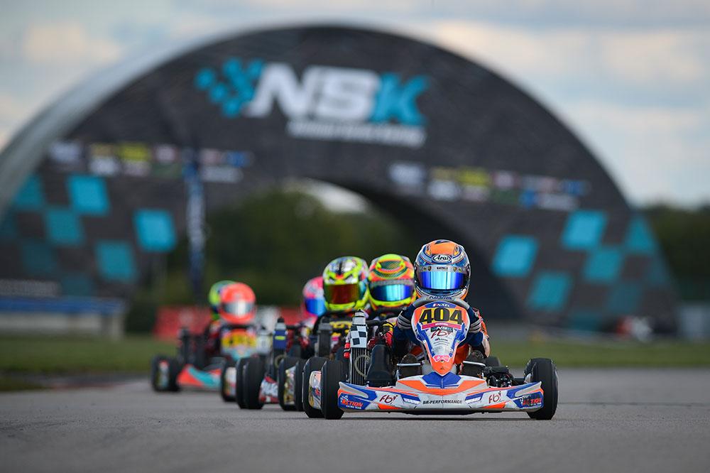 NSK3 - photo 5